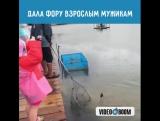 Ловись, рыбка, большая и ма-а-а-а-аленькая! ~Умная Мама~