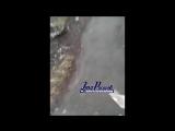 Ростовчанка пожаловалась на мусор на 25-й Линии -19.04.17 — Ростов-на-Дону