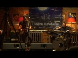 Собаки Качалова - Rock On!