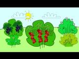 Мультфильм про фрукты. Развивающие мультики для детей до 4-х лет.