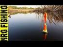 Рыбалка на крупного карася в тихой заводи невозможно оторвать глаз от поплавка