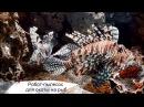 INews 28.07.17 - робот-пылесос для охоты на рыб шестой палец для руки, управляемый ногой