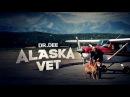 Доктор Ди: ветеринар Аляски   Полет