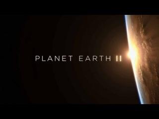 Планета Земля 2 сезон 1 серия. Острова / Planet Earth II (2016) - Видео Dailymotion