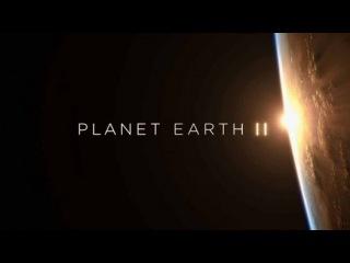 Планета Земля 2 сезон 2 серия. Горы / Planet Earth II (2016) - Видео Dailymotion