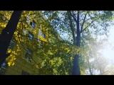 Самые красивые моменты осени 🙈