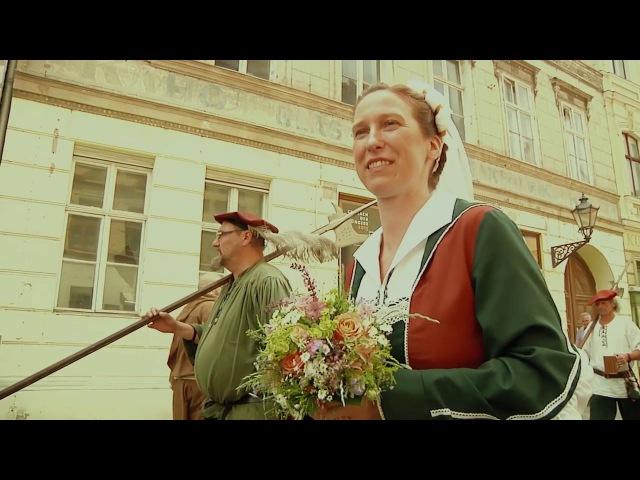 Свадьба в Виттенберге/ Телесериал о Мартине Лютере