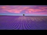 #Потрясающе Красивая Релакс Музыка Вокал