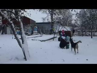 Влог: зимой в деревне у бабушки с дедушкой/ Vlogs: Winter in the village with her grandparents