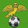 Футбол в Киржаче