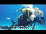 Тайны Чапман - Есть ли жизнь под водой ( 01.11.2016 )