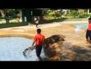 Langkawi crocodile ferm