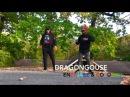 DragonHouse Enerjaee Cordaro