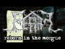 FERAL - Reborn In The Morgue (Official Lyric Video)