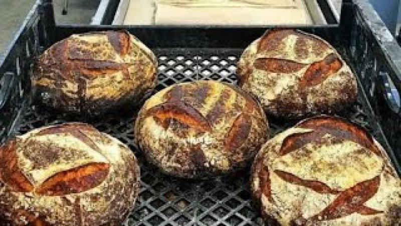 Das täglich Brot daß uns krank macht oder wie mit Chemiecocktails Brot und Brötchen gemacht werden