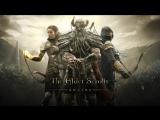 Побегушки в The Elder Scrolls Online - В Сейфе 102500 золота. (TESO, ESO)