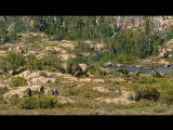 Прогулки с динозаврамиWalking With Dinosaurs 4 серия (Озвучка Николая Дроздова)