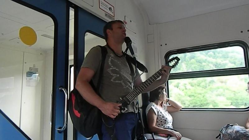 Скрипка Лиса