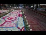 サッポロフラワーカーペット 2017 ( SAPPORO Flower Carpet 2017 )
