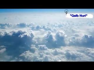 Abdulloh domla Ota-Onaga e'tibar