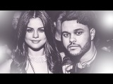 Selena Gomez and The Weeknd Roby Fayer Run (ft.Tom Gefen) By Tori
