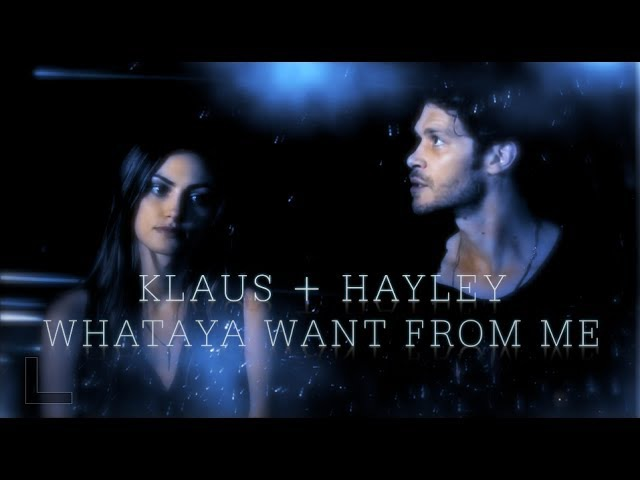 Klaus Hayley || Don't Give Up On Me
