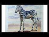 Watercolor Zebra Tutorial, painting zebras in watercolor