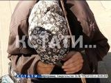 Скандальное разоблачение  - под костюмом немощных старушек прячутся молодые мошенницы