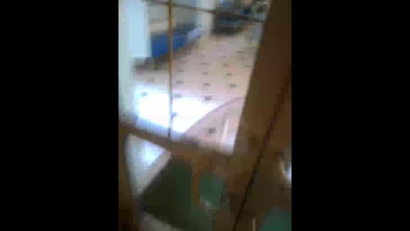 трифоновские бани