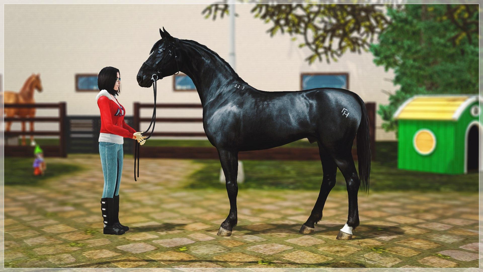 Регистрация лошадей в RHF 2 - Страница 5 OgcNXcRScl8