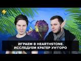 Фогеймер-стрим. Дима Злотницкий и Антон Белый играют в Hearthstone: Journey to Un'Goro