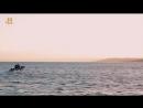 History Акульи пастухи 06 Аллея акул Реальное ТВ 2012