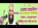 Bangla Waz Al Quran Naziler Uddessho Boishitto Morzada ft. Allama Delwar Hossain Saidi Mahfil