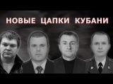 Новые Цапки Кубани  Аналитика Юга России