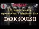 4 Dark Souls 2 SotFS Лес Павших Гигантов картограф Кейл и добродушный Пейт