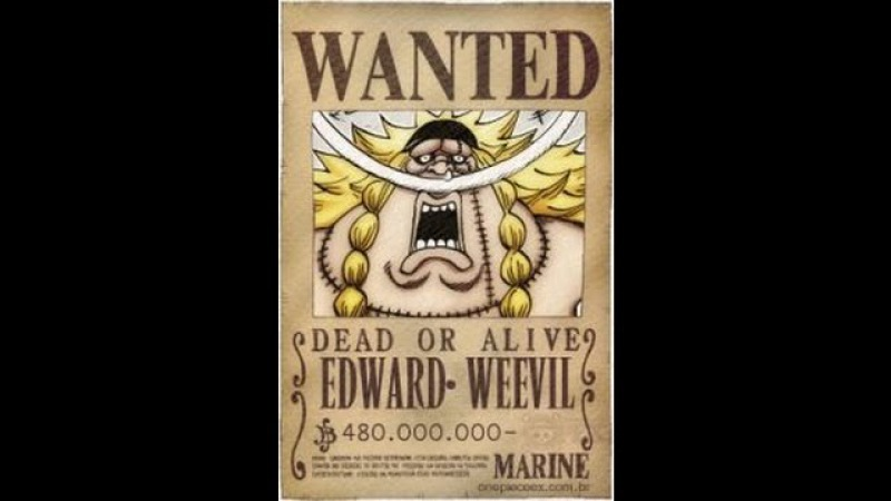 Edward Weevil self-proclaimed son of Whitebeard one of the Shichibukai appears | One Piece 751 | Ван Пис