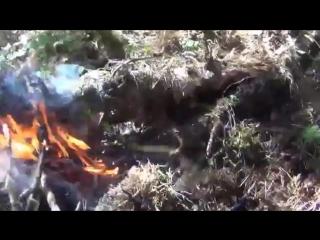Выживание в тайге Сказочная тайга Рыбалка на хариуса Клещ Змеи Медведи Лоси Горб