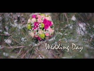 Wedding Day`s Vova&Natasha. 26.11.2016