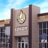 Городской центр народного творчества «Сокол»
