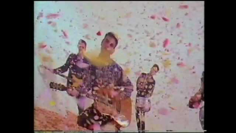 The Wedding Present Why Are You Being So Reasonable Now? promo video
