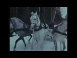 Ольга Воронец Белый снег