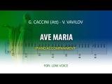 Ave Maria  Karaoke piano  Caccini (Att) -Vladimir Vavilov   Low voice