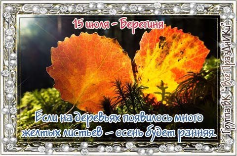 https://pp.userapi.com/c637516/v637516298/5cdfb/D6rFAG0TfsA.jpg
