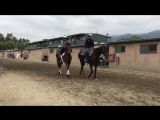 Walter , Lady Eli and Cherie DeVaux head to the track