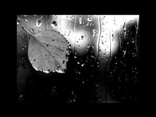 Эмиль Горовец. Дождь и я.