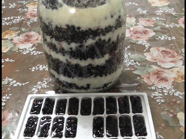 Бузина черная(Sambucus nigra)Полезные свойства.Рецепт приготовления
