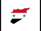 На юго-западе Сирии вступает в силу перемирие (09.07.2017)