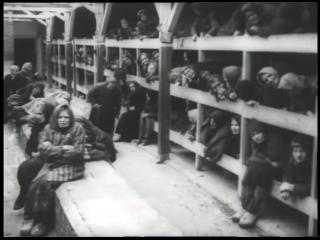 Зверства фашистов в концлагерях преступления против человечности ЭТО НЕЛЬЗЯ ЗАБЫТЬ ДЕТИ ВНУКИ 18+ВНИМАНИЕ ФИЛЬМ СОДЕРЖИТ СЦЕНЫ Н