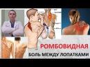 Боль между лопатками Ромбовидная мышца Упражнения