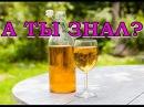 Домашнее вино из яблок. Пошаговый рецепт